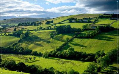 PE Global Healthcare - Explore the UK and Ireland